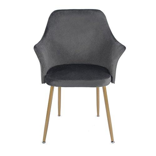 EGGREE Stuhl Samt Esszimmerstuhl Küchenstuhl Retro Polstersessel mit Weich Kissen Sitz und Metall Beine, 5 Farben